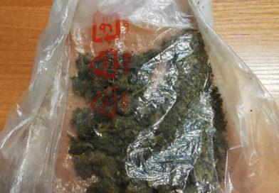 TOMASZÓW Narkotyki w rękawie